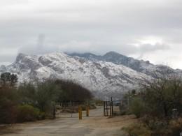 Mt Lemon and Catalina mountains