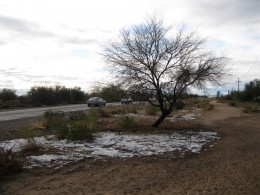 Patch of snow along N. Shannon Rd. in Tucson