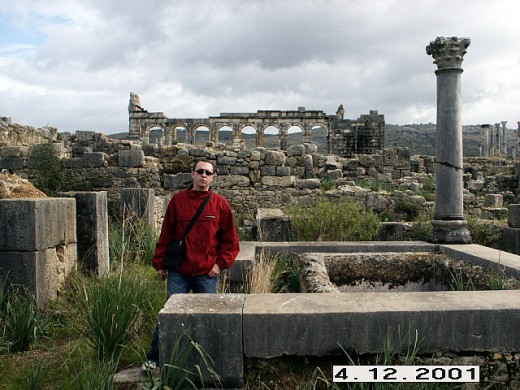 World Heritage Site of Volubilis, the Roman Ruins of Morocco.