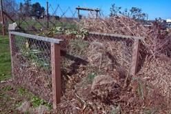 Successful Composting For Your Garden