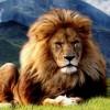 Rebecka91 profile image