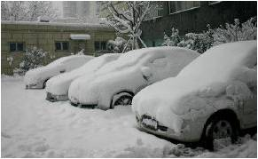 COLD WAVE: Cars covered with snow at a residential quarters in Hangzhou, capital of Chinas Zhejiang Province, on Saturday (01/02/2008).  Snow storms that hit 19 provinces in southern and central China, the worst in 50 years, have killed more than 60