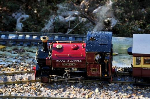 All Images : Copyright David Lloyd-Jones 2011