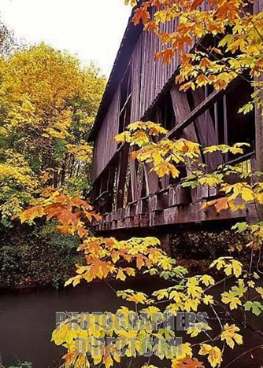 Currently, the Chambers Covered Bridge in Cottage Grove is the last remaining covered railroad bridge west of the Mississippi.