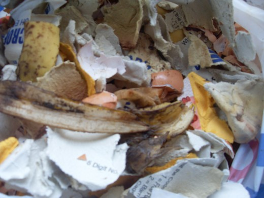 Getting the mix right when you compost, banana skins, egg shells and teabags add trace elements, while torn up egg boxes act as the browns needed to bulk up the compost