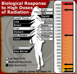 Japan Nuclear Crises: Radioactive Traces in Air, Food and Water. Potential Risks