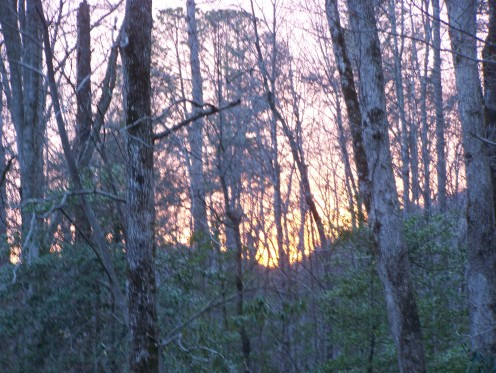 sunset at Elkmont
