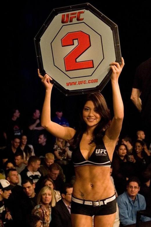 UFC 130 Aria