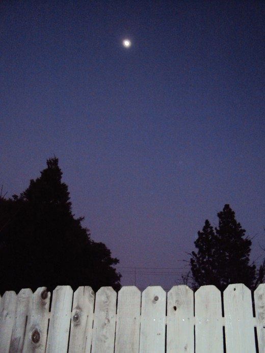 There is something very appealing about filming the moon over the fence.
