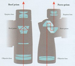 Need Binoculars, This Info Will Help You Pick the Right One.