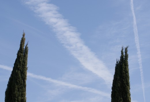 Contrails and other Stupid Human Ideas