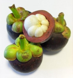 GOD Provides FRUIT For FOOD:  MANGOSTEEN (Antioxidant for Diseases)