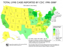 Lyme disease a hidden epidemic