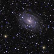 Stargazer32 profile image
