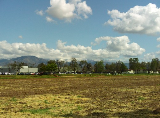 A field in Southern California.