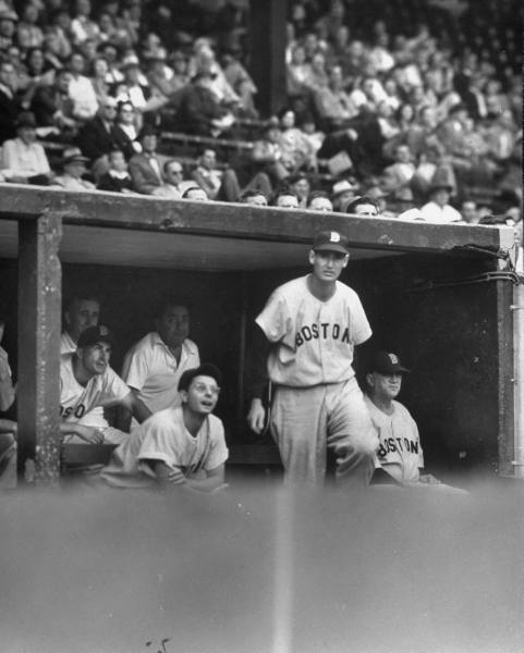 Ted Wiiliams: The Greatest Hitter?