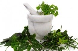 Fresh herbs for your health