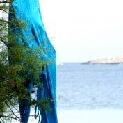 Maltese-er profile image