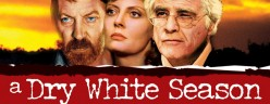 A Dry White Season Film Review