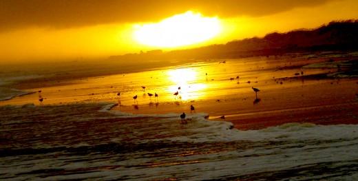 Golden sunset on the beach near Frisco, North Carolina