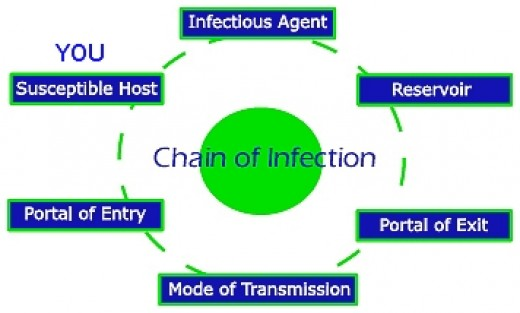 cause and spread of infection essay This free health essay on prevention and control of infections at work is perfect  for  measures to prevent and control the spread of infection in the workplace  this  they need to make certain that their own health and hygiene will not cause  a.