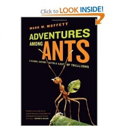 Entomologist Moffett, who has been described as the Indiana Jones of entomology, takes the reader along as he travels the world in search of ants. Ants are found on every continent except Antarctica and in virtually every climate.