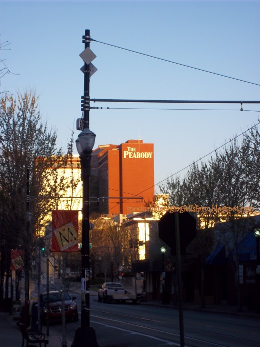 Standing in the middle of President Clinton Avenue, the Peabody from the River Market, Little Rock, AR
