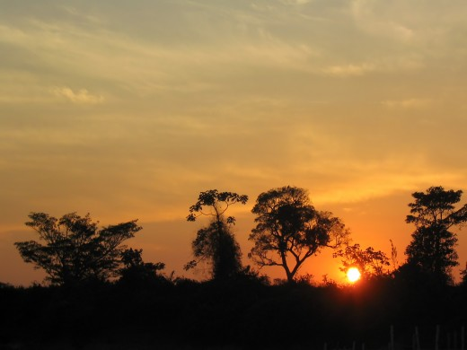 Sunset in the Amazon River Basin, Bolivia. All rights reserved.