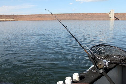 Chatfield state park colorado for Chatfield fishing report
