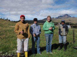 The adventurers help plant trees in the Cotopaxi area.
