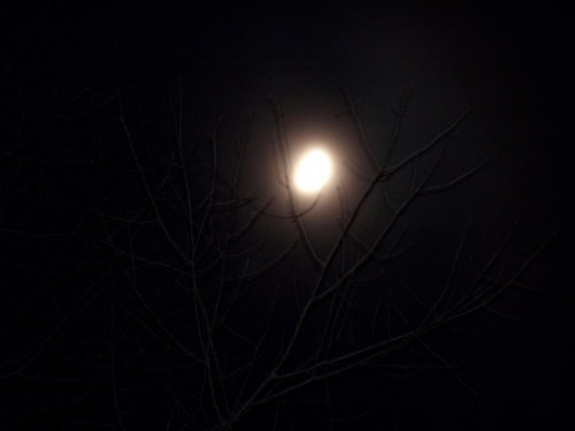 Even though the moon looks beautiful to your eye, did you come up with a picture of a white dot?