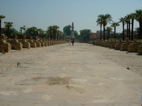 Luxor Temples Courtyard -  Egypt Tour of the Ancient Wonders