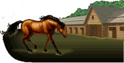 Learning about Horses with an Online Game