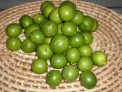 Limes used in this Raw Jicama Cocktail Recipe