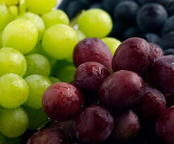 Grapes contain flavonoids, phenolic acids, and resveratrol that are good for humans but not pets.