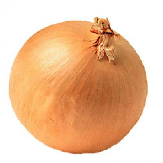 Fresh or cooked onions cause more problems than garlic. Don't feed prepared meals with onions to pets.