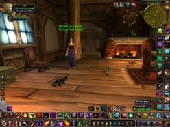 World of Warcraft Alliance Vanity Pets - A Guide On Where To Find Them