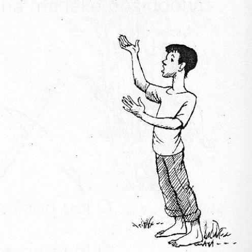 All illustrations by Robert B. Butler
