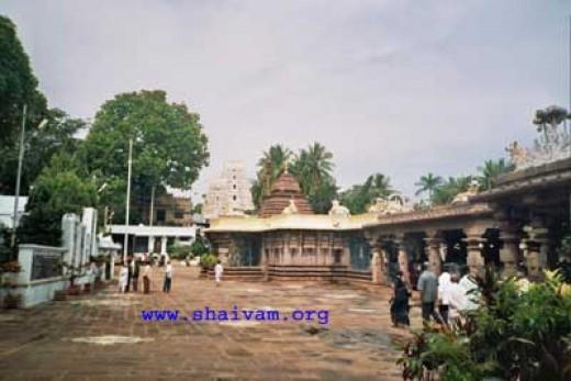 Mallikarjun,Srisailam,Kurnool Dist,Andhra Pradesh,South India