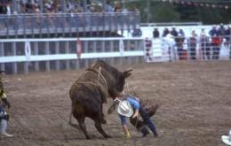 Better Luck Next Time Cowboy