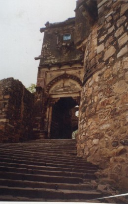 The second enterence of Ranathamore fort(Another picture.This second enterence is called-'Hathi pole',i.e.-elephant gate