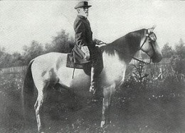 General Lee and his horse Traveller
