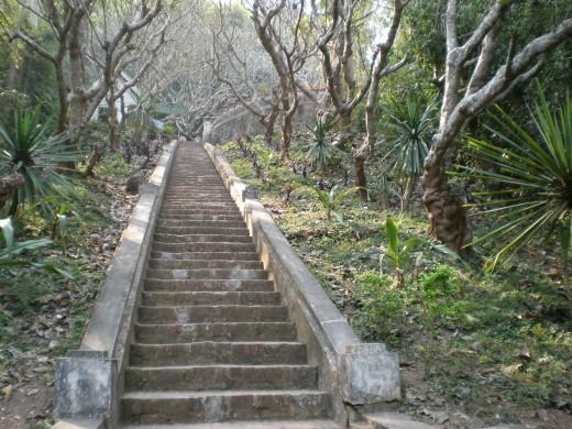 Phu Si Gardens. Stairs to Wat Tham, Luang Prabang, Laos.