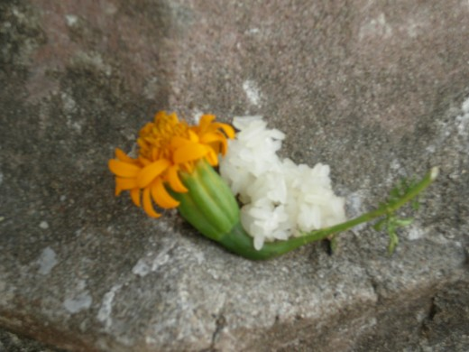 Buddhist Offering