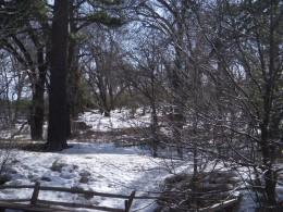 Hike or Sled