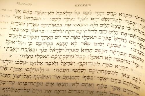 Hebrew text of Exodus 12 on the Passover (the relevant portion subtly highlighted). Image:  Kenneth Sponsler|Shutterstock.com
