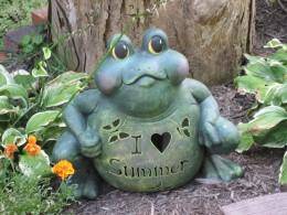 The Frog - No nonsense!
