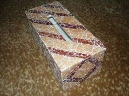 A tissue box made from a shoe box.