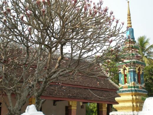 Stupa, Buddhist Temple, Luang Prabang, Laos.