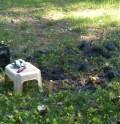 Garden Plot tilled...